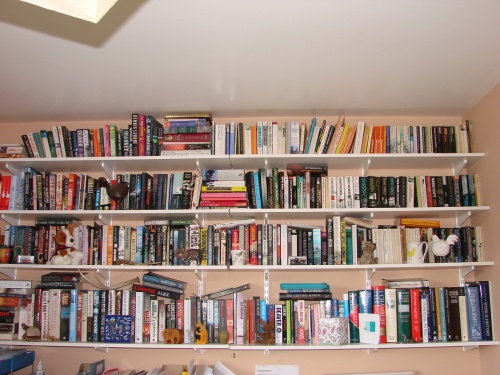 Janet Okane bookshelves 001